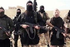 اعضای خارجی داعش بیشتر از چه کشورهایی هستند؟