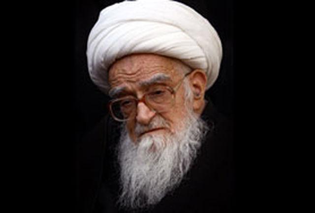 آرزو دارم قدمهای عزاداران حسینی را بوسه بزنم