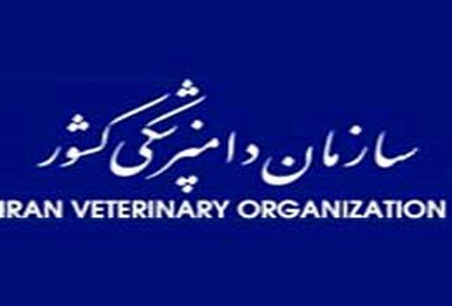 برنامه سازمان دامپزشکی برای سامان دهی ذبح دام غیر بهداشتی
