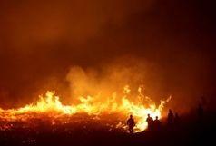 مهار 4 آتش سوزی در استان فارس