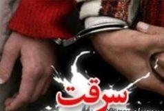 دستگیری 87 سارق و کشف بیش از 1 تن و 300 کیلوگرم انواع موادمخدر در ایرانشهر