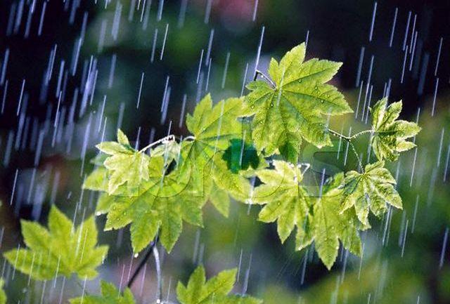 ثبت 2 میلیمتر بارندگی در یک هفته گذشته