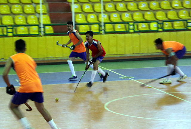 صعودتیم همدان به مرحله نیمه نهایی لیگ برتر هاکی