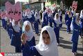 عدم توزیع شیر در مدارس زنجان